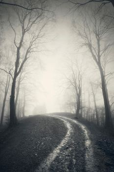 ...road to nowhere IV... by roblfc1892