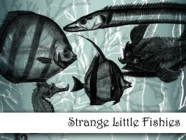 Strange Little Fishies by remittancegirl
