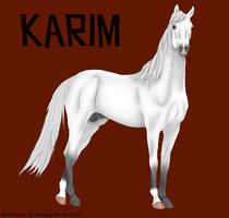 GB Karim by Happy-Horse-Stable
