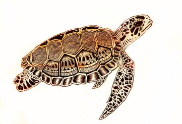 Sea Turtle by nadzie
