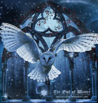 The Owl of Winter (remastered) by Melanienemo