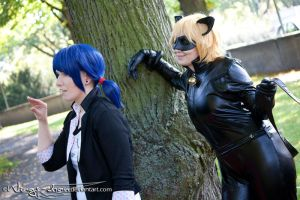 Miraculous Ladybug | MariChat | X by Wings-chan