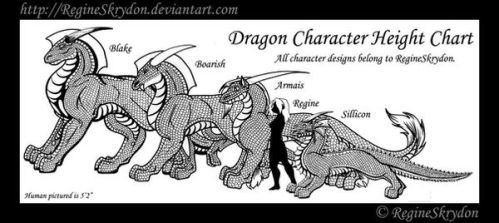 Dragons - Character Size Chart by RegineSkrydon