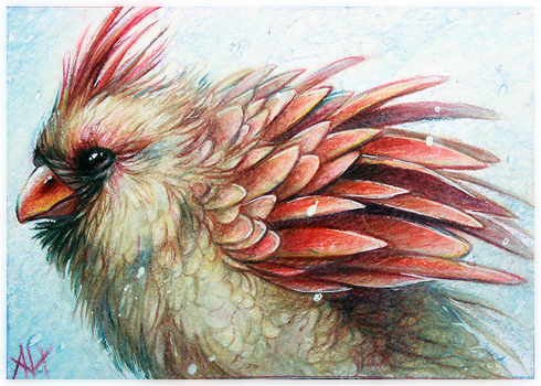 ACEO-Cardinal by soulwithin465