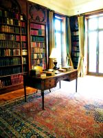 The Library by Fall-of-Light