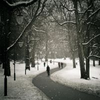 Cycling through winter by Oer-Wout