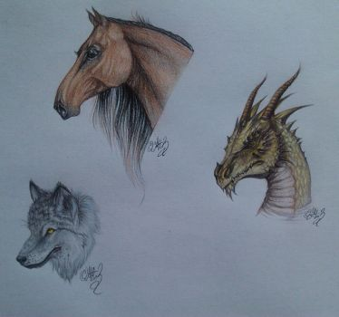 A horse, dragon and wolf by OlnyDevil