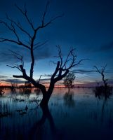 Sunset on the Lake by FireflyPhotosAust