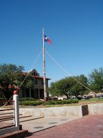 The Lone Star Flag by InkTheEchidna