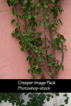 Creeper image pack by photoshop-stock