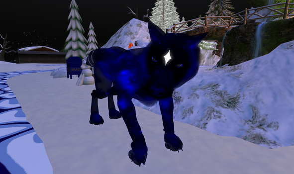 Painless the Canis Major by PainlessWolf
