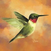 Humming Bird - SP by GoldenDruid