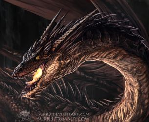 Smaug by Surk3