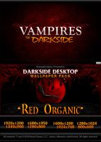 Darkside Desktop 2 by JesseLax