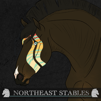 8862 ES Jolly Roger by NorthEast-Stables