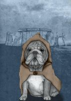 English Bulldog in Stonehenge by barruf