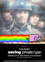 Saving Private Nyan by rwlpeter