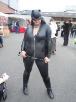 Catwoman by castor227027