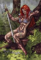 Red Sonja Colors by Fatboy73