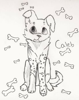 Introducing... Caleb!!! by Canine--Artist