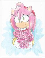 Amy rose- Gift by SonicMiku