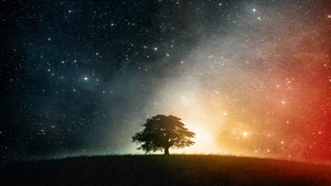 Tree and Stars original by Linux-Shines