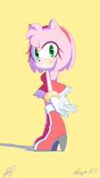 Amy Rose Colors by KenyaPF