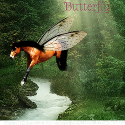 Butterfly Avatar by Cazzie77