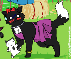 Dress Ravenpaw by DragonWolfGirl2