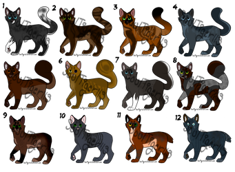 Warrior cat crackships Adopts/Auction /\ 10/12 /\ by CrookedtoothCypress