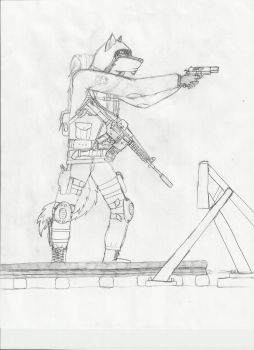 Freedom S.T.A.L.K.E.R. WIP by COD3-master
