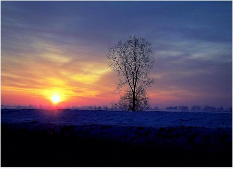 A cold sun is rising.... by surrealistic-gloom