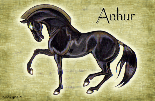 Anhur the horse by pookyhorse