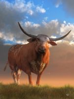 Texas Longhorn by deskridge