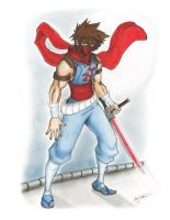 Strider Hiryu by sudowoodartist