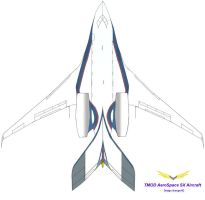TMOD AeroSpace Business Jet by clubraf