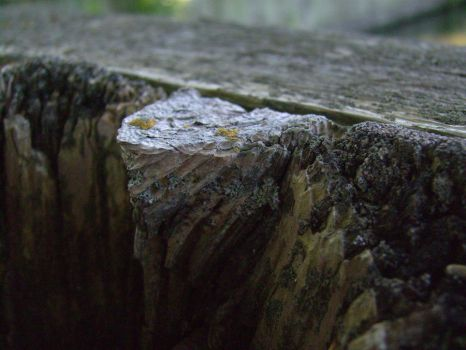 Lillipucian Cliff 2 by da-joint-stock