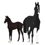 Mare and foal Commis by NorthernMyth