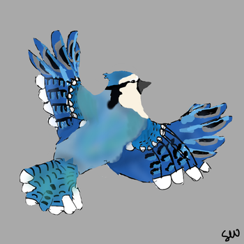 Blue Jay by SheepyWool