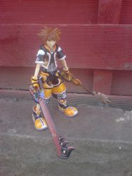 Sp Edition Sora Master Form 2 by l3xxybaby