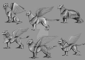 griff sketches by bubumo