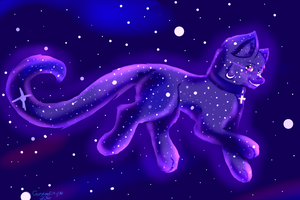Galaxy Cat by xSleepyKittyx