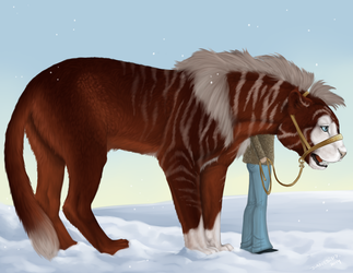 Winter King by Danesippi