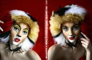 CATS - Video Bombalurina by shoujome