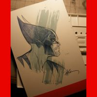 Wolverine back cover sketch by MichaelDooney
