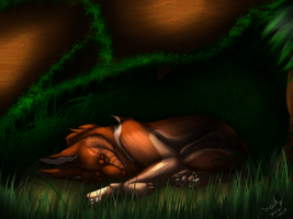 A Comfy Home (Trails of Youth: One) by Sneakysniper11
