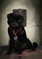 Guard Dog by graver13