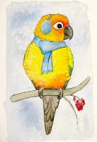 Cozy Parrot by greencheek