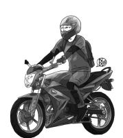 Fz150i 2013 by budoxesquire