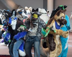 Fursuit Games - Defending Balloons by lupiniastudios